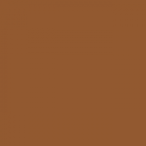 icon-color-pms10369c-brown